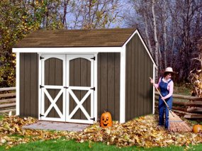 Aspen 8 x 12 Shed Kit by Best Barns